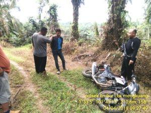 Pemuda Asal Tanjung Bungo Ditangkap di Areal Perkebunan Sawit karena Bawa Sabu