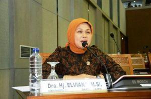 Tinggalkan Jalur Partai, Elviana Pilih DPD RI untuk Pemilu 2019