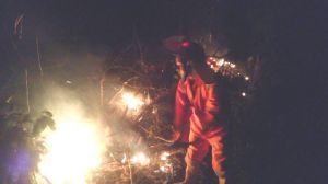 1 hektar lahan kosong habis terbakar