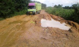 Warga Keluhan Jalan Provinsi Ini Rusak Parah, Edi: Desa Ibu Masnah