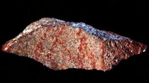 Ilmuwan Temukan Lukisan Tertua di Pecahan Batu