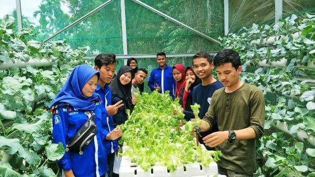 Isi Hari Libur Genbi Tanam Sayuran Hidroponik