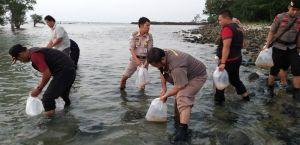 Benih Lobster Senilai Rp9,18 Miliar Berhasil Dilepasliarkan di Banten