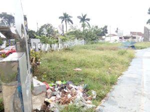 Taman Tugu Juang Terkini: Sampah Berserakan, Rumput Belukar Setinggi Kaki Orang Dewasa