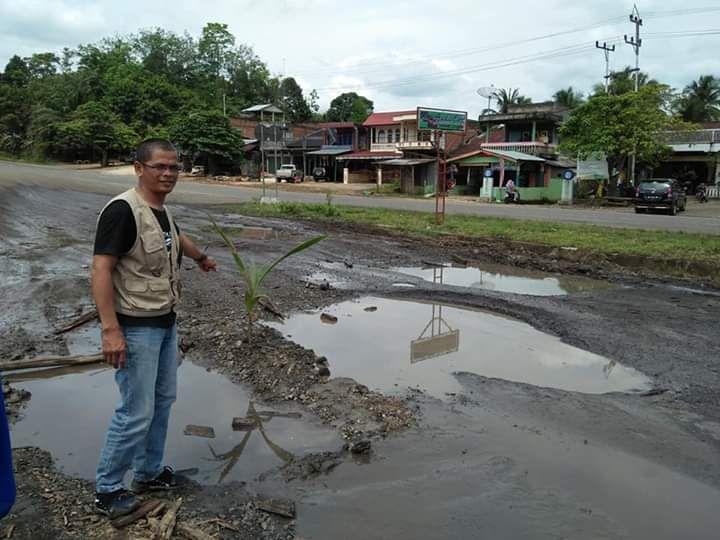 Warga Tanam Pohon kelapa di jalan yang rusak