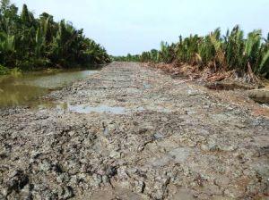 H-5 TMMD Kodim 0419/Tanjab, Realisasi Pembangunan Jalan Sudah  89,4 Persen