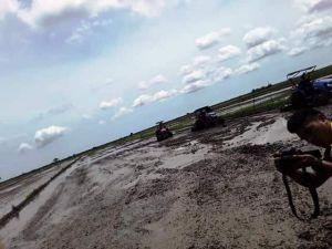 Mampukah Tanjab Timur Menjadi Lumbung Pangan Di Provinsi Jambi?