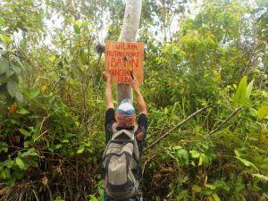 Perambah Culik Staf Hutan Harapan Usai Pengamanan Area Perhutanan Sosial SAD Batin Sembilan