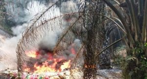 Soal Kebakaran Sumur Minyak Ilegal di Batanghari, Ini  Tanggapan Pertamina EP
