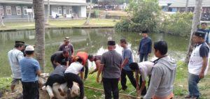 RSUD Raden Mattaher Jambi Potong 7 Hewan Kurban Sapi yang Akan Dibagikan ke Masyarakat tidak Mampu