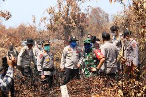 Kapolda Jambi Turun ke Lokasi Padami Api di Kumpeh Ulu