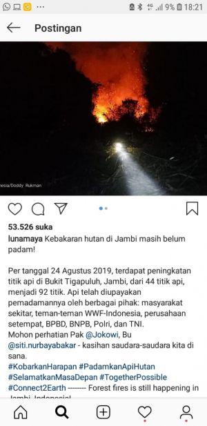 Komentari Karhutla di Jambi, Luna Maya dan Sejumlah Artis Kok Sebut WWF-Indonesia