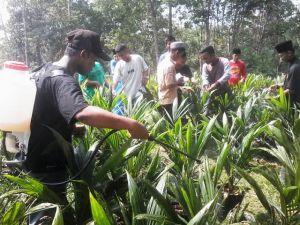 SMK Asy'ariyah Bersama Dosen Fakultas Pertanian UNJA Gelar Pelatihan Aplikasi MOL