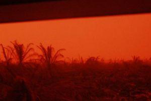 Akibat Karhutla, Langit Di Kumpeh Muaro Jambi Berwarna Merah, Siang Hari Bak Suasana Magrib
