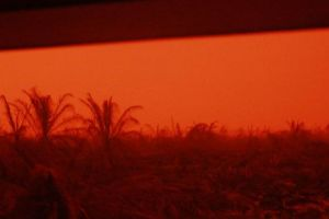 Fenomena Langit Memerah di Kumpeh Kabupaten Muaro Jambi, Ini Penjelasan BMKG
