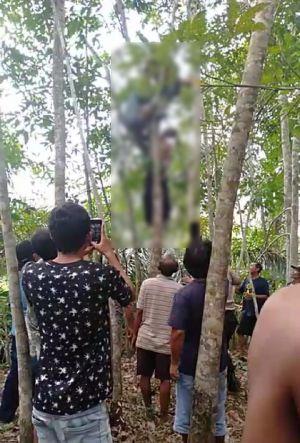 Pria Ini Ditemukan Tergantung di Pohon Karet Setelah Bayar Hutang dan Minta Maaf ke Kerabat