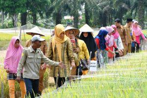 Yunninta Gagas Program Bantuan Untuk Orang Lanjut Usia Di Batanghari