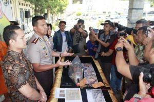 Polisi Amankan Pelaku Penebang Pohon Rimba di Hutan Lindung Perhutani Ciamis