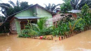 5 Kecamatan Rawan Banjir, BPBD Tanjabbar Lakukan Pemetaan