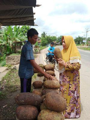 Manfaatkan Musim Cempedak, Yunninta Dorong Produk Olahan Sebagai Tambahan Pendapatan