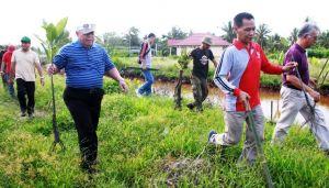 Menuju Indonesia Sejuk, Pemkab Tanjabbar Gandeng Petrochina Tanam Mangrove