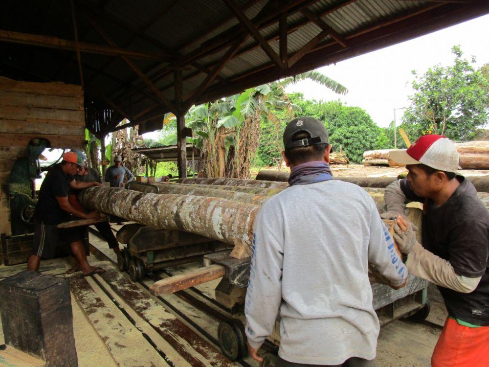 Pemantauan Tempat Penampungan Kayu TPK di Tebo oleh KPHP Tebo Timur